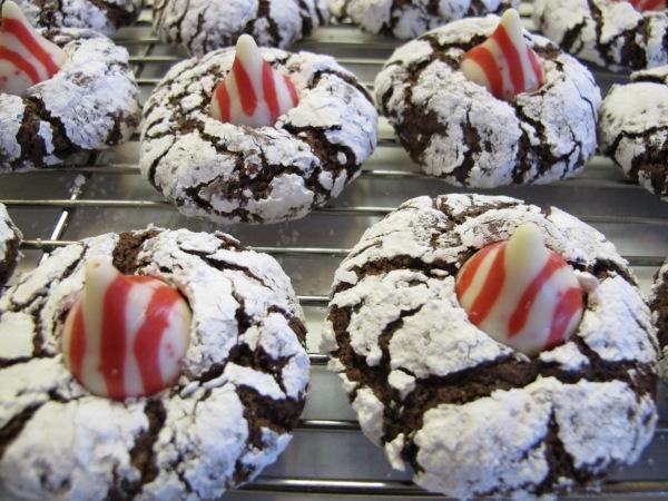 Chocolate Crinkles (11)