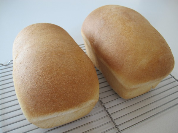 Honey Wheat Bread (13)
