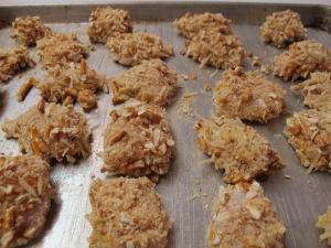 Pretzel Crusted Chicken Nuggets (10)