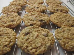 Oatmeal Chocolate Chip Cookies (10)