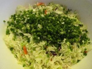 Crunchy Asian Salad (5)