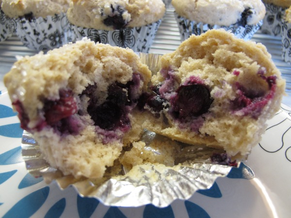 Blueberry Muffins (1)